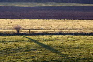 horizontal striped ground