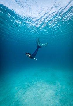 mermaid in body of water