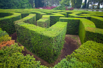 Maze in a park