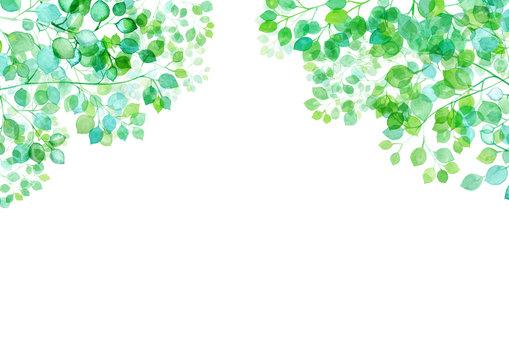 木漏れ日のイメージ。水彩イラスト。新緑のフレーム背景