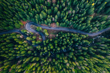 Drone view of winding forest road