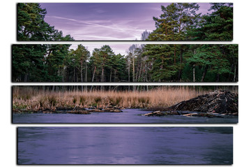 modular picture on white background . landscape frozen lake and beaver dam.