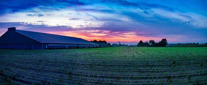 Colorful sunrise, typical Dutch agricultural landscape