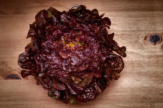 red leaf lettuce in a colander