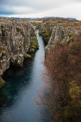 Fototapete - Thingvellir Nationalpark, Island