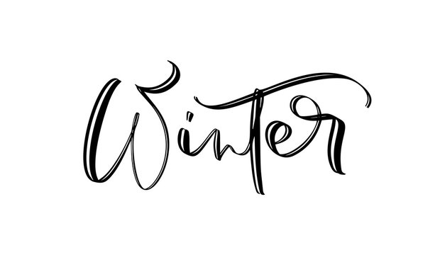Winter wonderland text, hand drawn brush lettering. Holiday greetings quote isolated on white. Great for Christmas and New year cards, gift tags and labels, photo overlays.