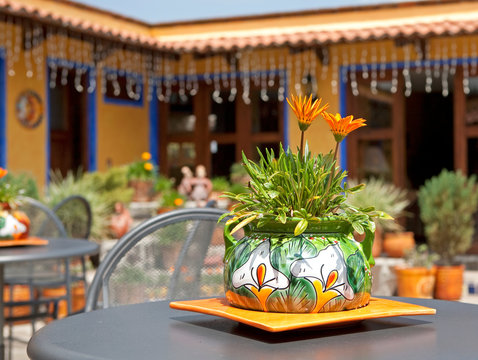 flowers and flower pot on a table in the courtyard of a mexican hacienda ranch holiday resort destination