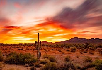 Buetiful Sunset in the Desert, Quartzsite Arizona