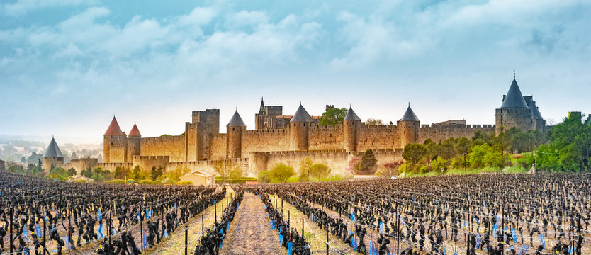 View of the medieval city of Carcassonne from a vineyard, France
