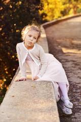 little fashion princess