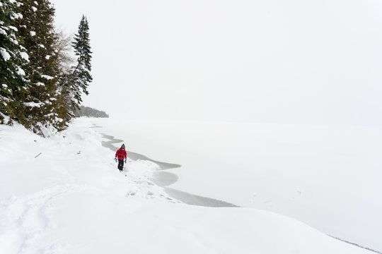 Boy having fun on vacation walks alone under snow-covered pines