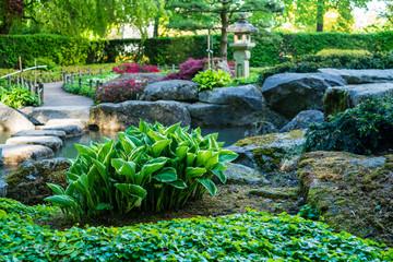 Foto op Plexiglas Singapore D, Bayern, Augsburg, Botanischer Garten, Japanischer Garten im Frühjahr