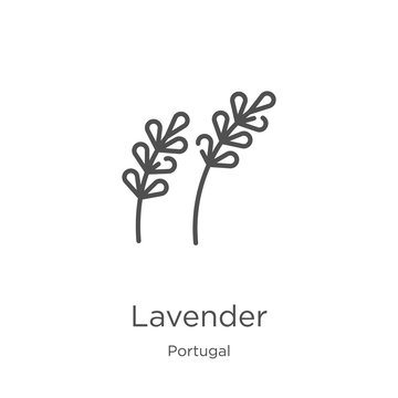 lavender icon vector from portugal collection. Thin line lavender outline icon vector illustration. Outline, thin line lavender icon for website design and mobile, app development.