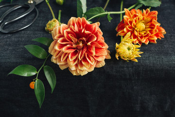 Close up of dahlia flowers on table