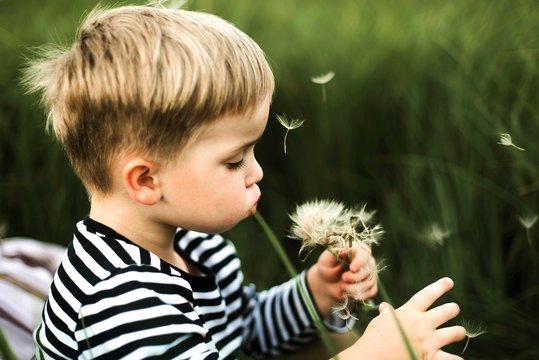 Side view of boy blowing dandelion flower outdoors