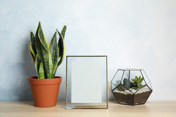 Exotic plants and photo frame on table near color wall, space for text. Home decor