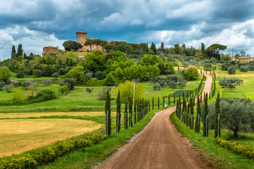 Fototapeta Landscape panorama from Tuscany, in the Chianti region