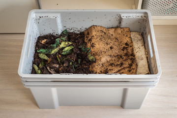 Top view of a DIY worm farm (composting bin) in an apartment