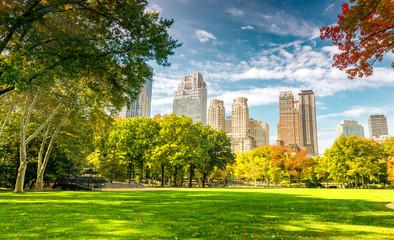 Fototapeta Beautiful foliage colors of New York Central Park obraz