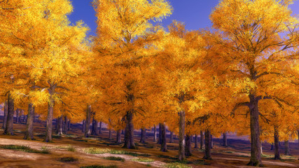 Beautiful beech canopy road 3d rendering