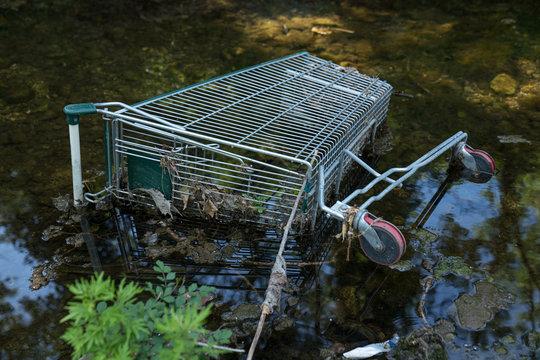 Abandoned metalic shopping cart on water