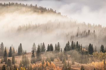 Spoed Fotobehang Ochtendstond met mist Scenic view of mountain covered with fog in San Juan National Forest