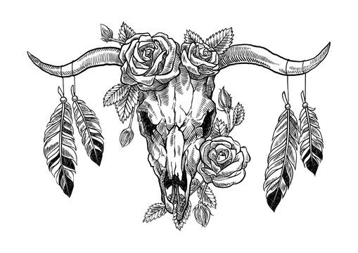Skull of a bull with roses and feathers in a graphic technique