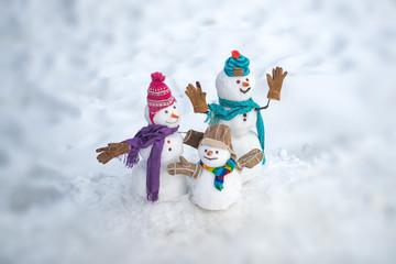 cbb32ca176d5f Cute snowmen standing in winter Christmas landscape. Happy winter snowman  family. Mother snow-