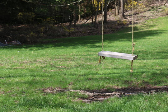 Wooden swing hanging from old tree in backyard