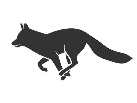 Abstract Running fox illustration vector Design template.