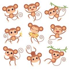 Baby monkey. Wild cartoon animals playing and eating banana vector characters of monkeys. Monkey and primate character with banana illustration