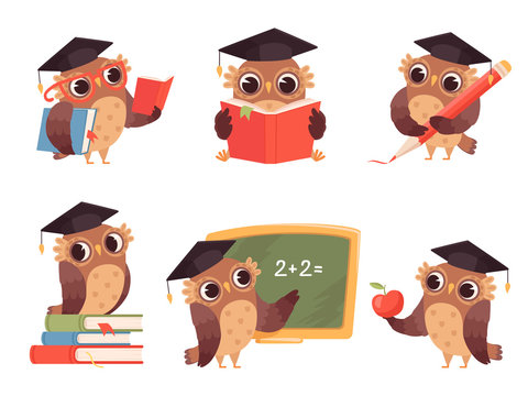 Owl teacher. Cartoon bird characters with back to school items cute mascots reading pointing vector illustration. Owl clever, mascot academic bird, teacher wise