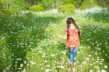 花畑を歩く女の子