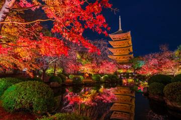 京都 東寺の紅葉 夜景 Wall mural