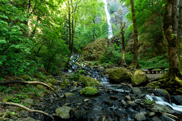 Starvation Creek Falls in the Columbia Gorge, Oregon