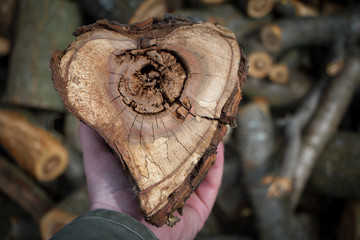 Closeup of male hands holding a heart-shaped wood cut for heating a house, background or concept
