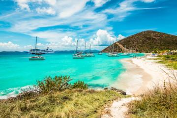 White Bay Beach, Jost Van Dyke, British Virgin Islands.  Fotoväggar