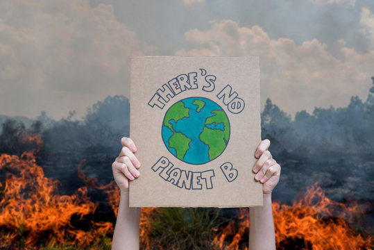 Climate change manifestation poster on a forest burning background: there is no planet b. Deforestation and destruction concepts
