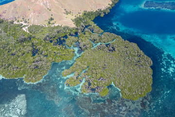 Wall Mural - Seen from a bird's eye view, an idyllic island is surrounded by a healthy coral reef in Komodo National Park, Indonesia. This tropical area is known for its marine biodiversity as well as its dragons.