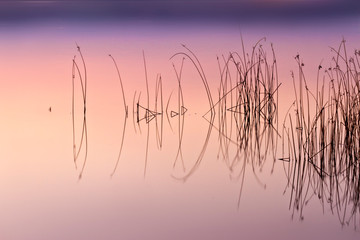 Lake and reeds. Abstract sunset nature background. Long exposure technique. Fototapete