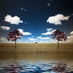 Fototapete - Lake and trees