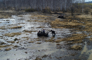 "Riders compete during the ""Kings of the Off-road"" amateur quad bike race in a Siberian boggy area in Krasnoyarsk region"