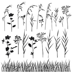 Set of silhouette flowers and grass, spring and summer forest and garden field flowers and grass, black color isolated on white background