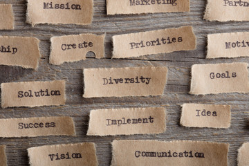 The word Diversity typed on a piece of paper - concept for a variety