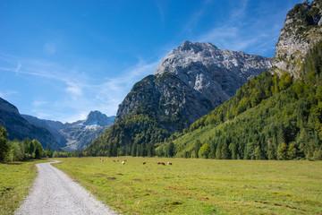 Wall Mural - Landschaft im Karwendel Gebirge in Tirol / Österreich