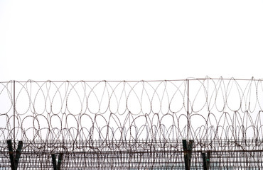 close up on iron barbed wire background