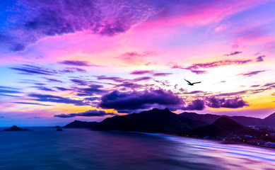 Panoramic View Of Exotic Tropical Ocean Islands And Mountain Sunset with Slow Waves And Purple Colorful Sky With Seagull Flying Into Sun