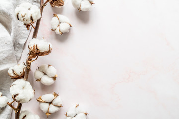 Cotton flowers on white marble background flat lay top view