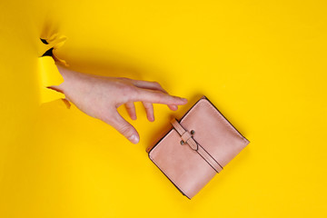 Female hand holding pink wallet through torn yellow paper. Minimalistic creative fashion concept