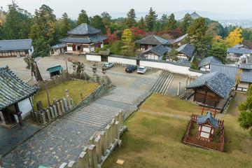 Fototapete - Todai-ji temple in historical city Nara, Japan